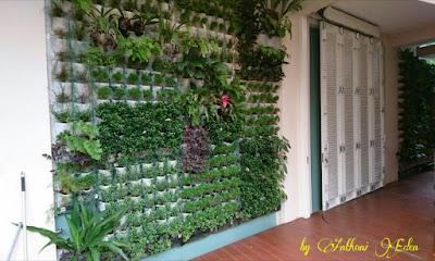 10 Desain Terbaru Taman Gantung Untuk Rumah Minimalis Dengan Konsep Alami 8