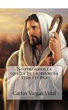 No perdamos la gracia de la hermosa vida eterna