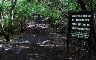 Existen numerosos letreros en varios idiomas a fin de evitar que la gente se suicide