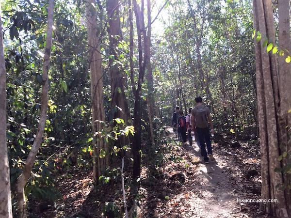 Rừng Nam Cát Tiên, Đồng Nai
