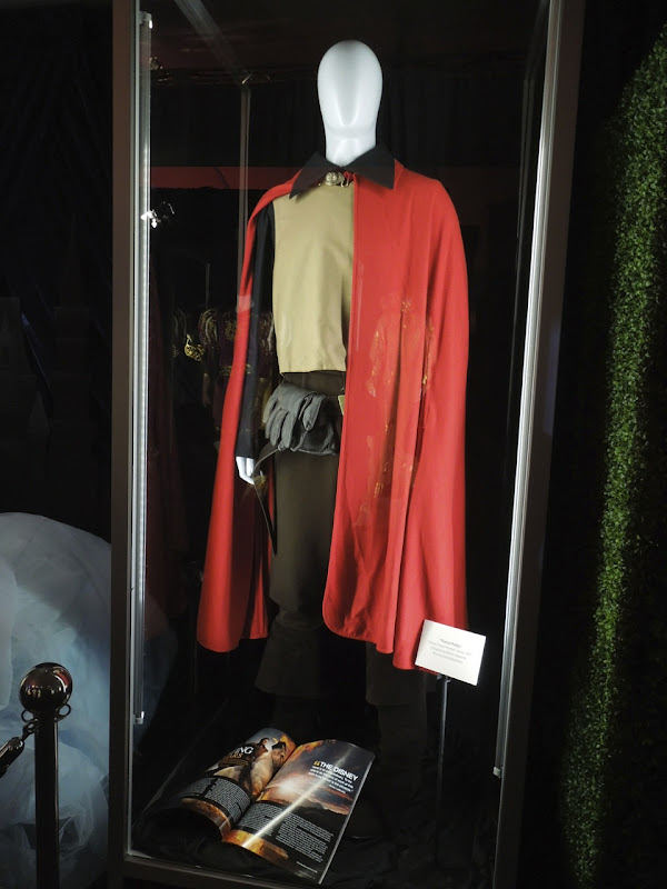 Hollywood Movie Costumes and Props: Disney Dream Portraits ...