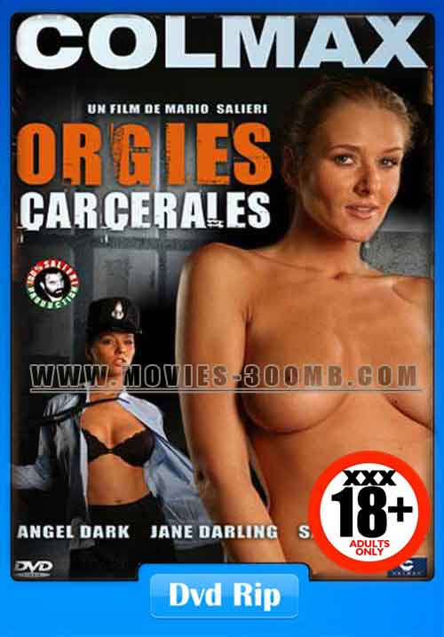18 Orgies Carcerales 2007 100Mb Hevc Dvdrip Xxx-3225