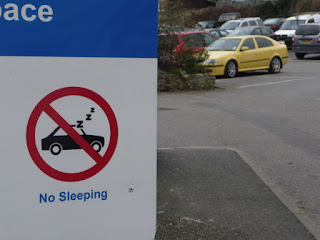 "A blue and white sign shown in front of a row of parked cars displays an image and text that says ""No Sleeping""."