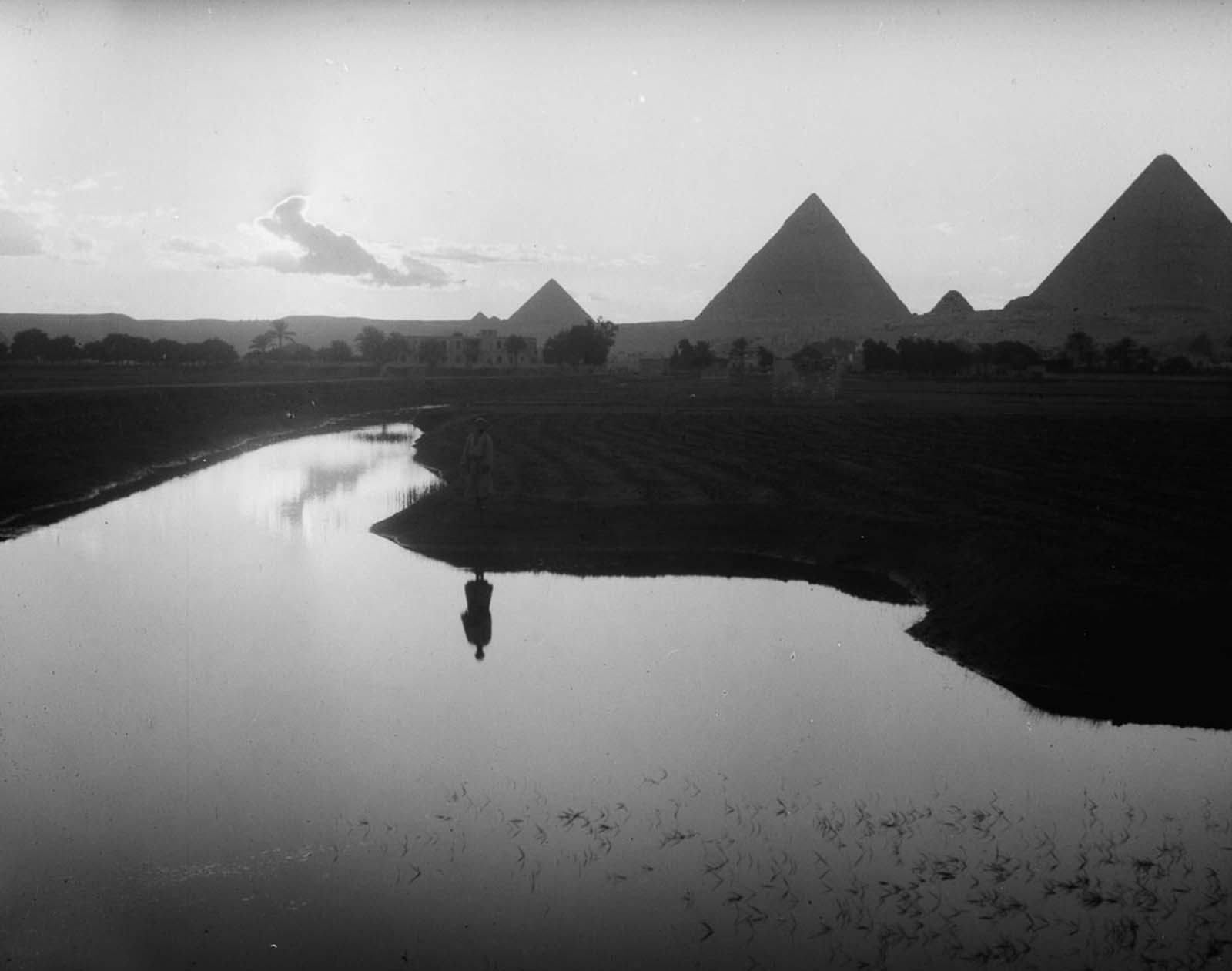 A farmer stands on the Nile floodplains near the pyramids of Giza. 1936.