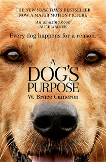 Review Film A Dog's Purpose (2017)
