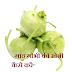 गांठगोभी की खेती कैसे करें-How to cultivate lump cabbage.Helpyouhindi