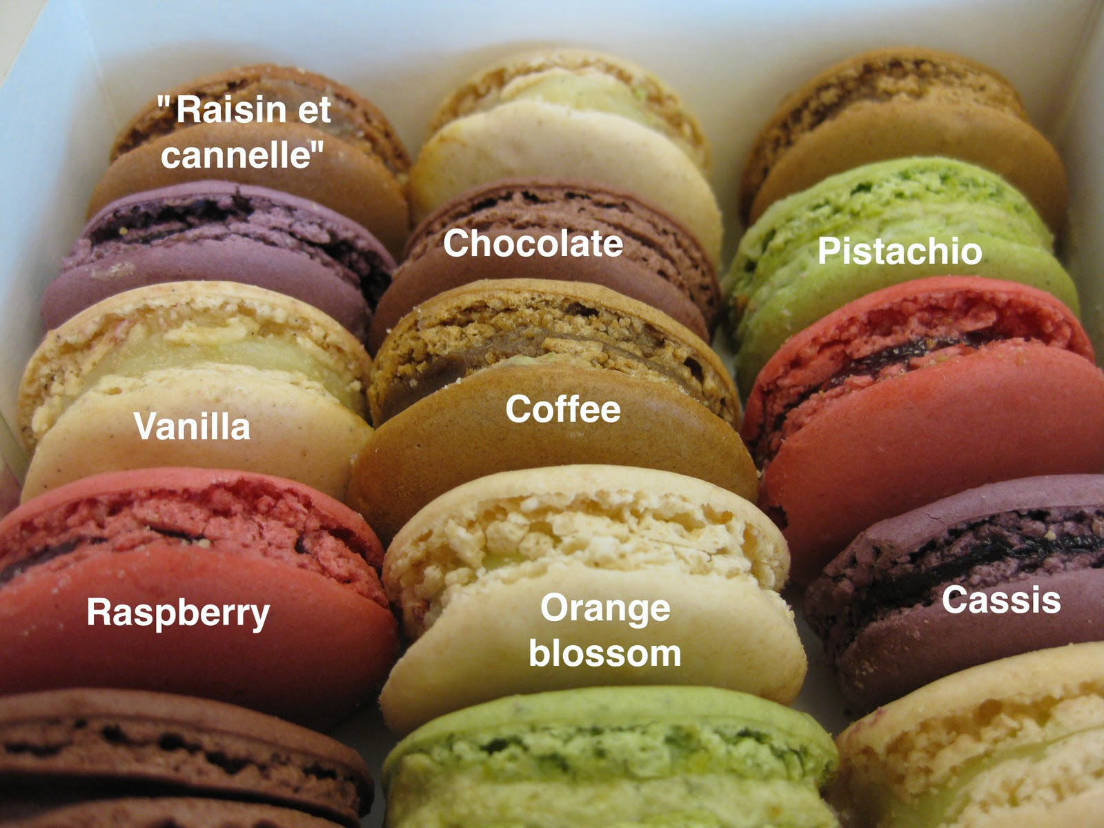 Les macarons Ladurée - Good Taste is the Worst Vice