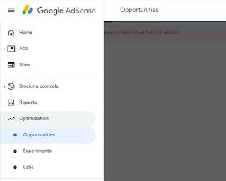 Experiments google AdSense, google AdSense earnings