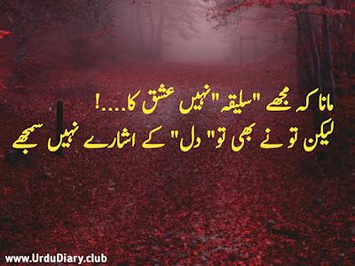 Mana k Mujhe Saliqa Nahi Ishq Ka...!  Lekin Tu Ne Bhi Tu Dil K Esharay Nahi Samjhe