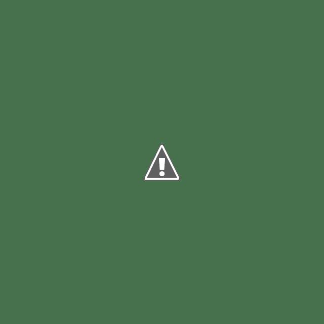 Di HUT Karimun Ke-17, Gubernur Kepri Harapkan Masyarakat Selalu Kompak