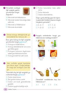 5. Sınıf Fen Bilimleri Ders Kitabı Cevapları Ada Sayfa 66
