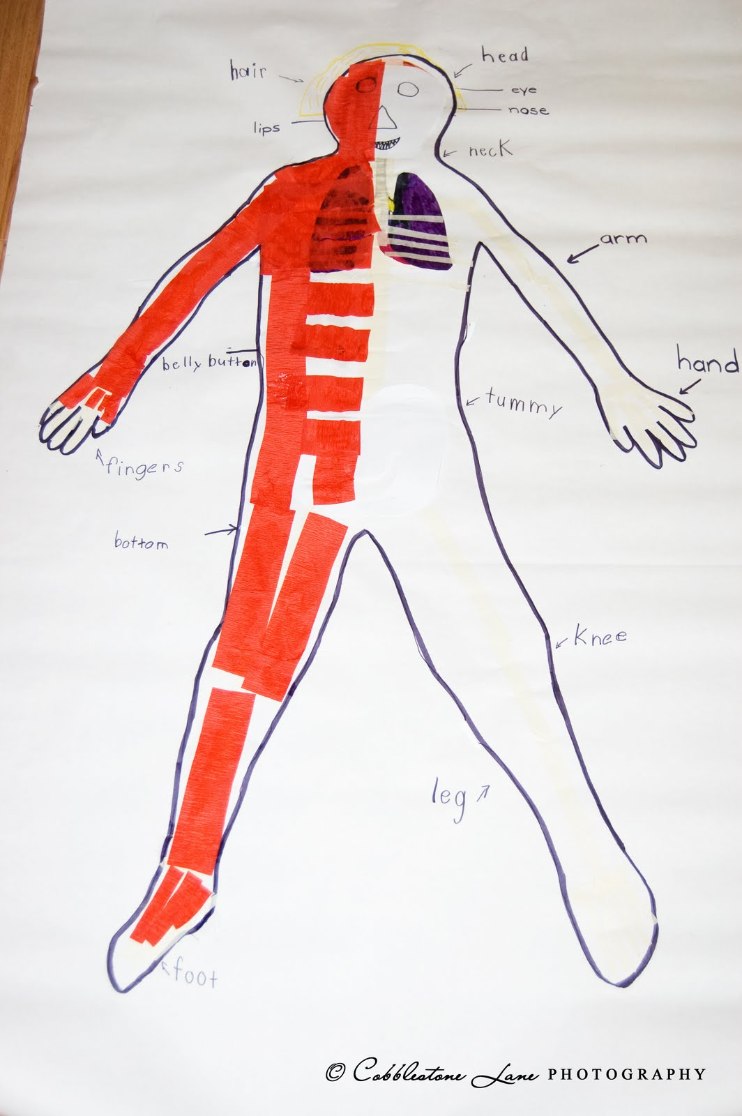The Nature Of Grace Week S Theme My Body Body Mapping Activity