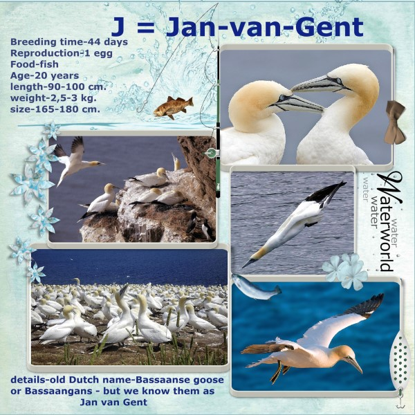 Oct.2016 - J = Jan van Gent