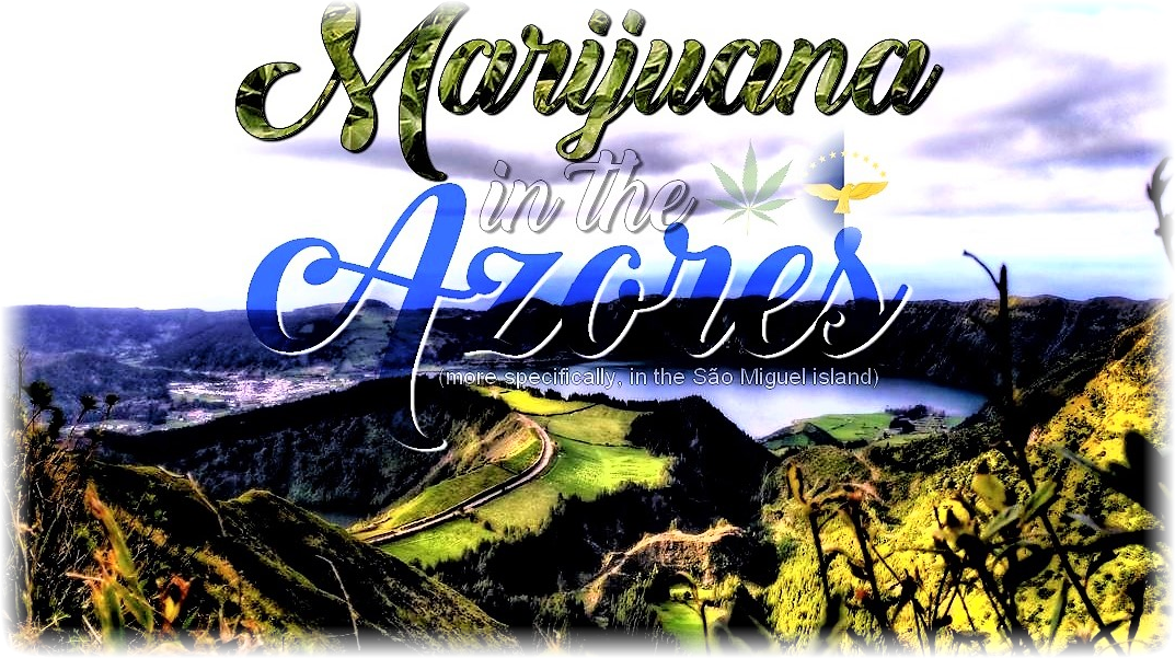 Marijuana/cananbis/weed in the Azores