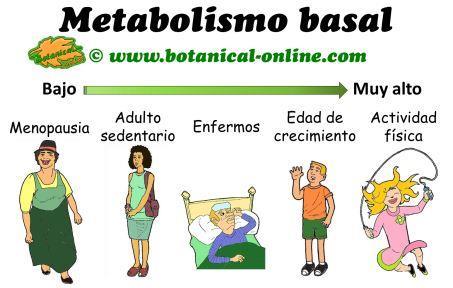 Pastillas de pérdida de peso definido