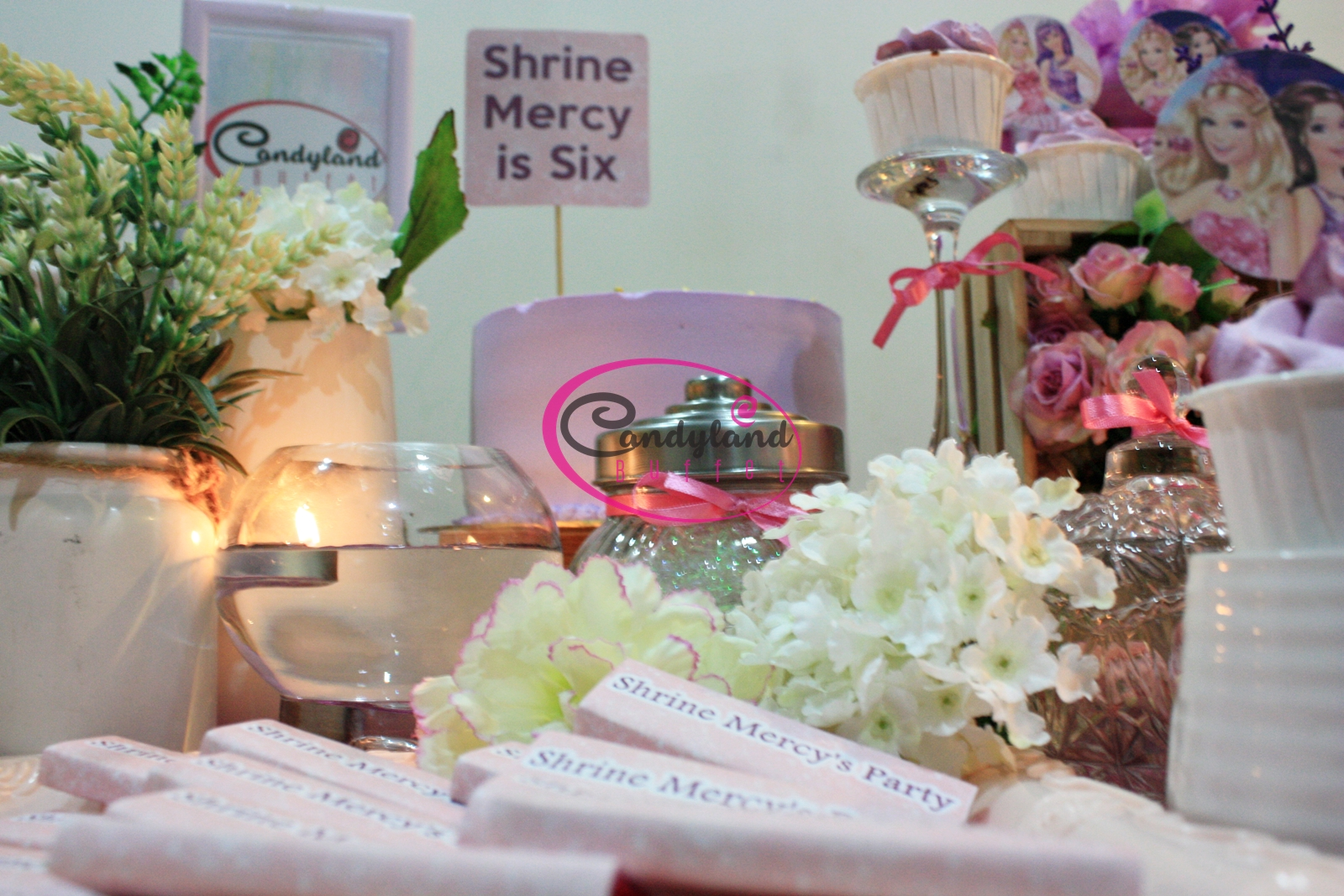 Barbie birthday theme candyland buffet barbie birthday theme contact 0166088067 for more details izmirmasajfo Gallery