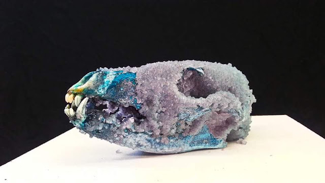 Crystallized Coyote Skull