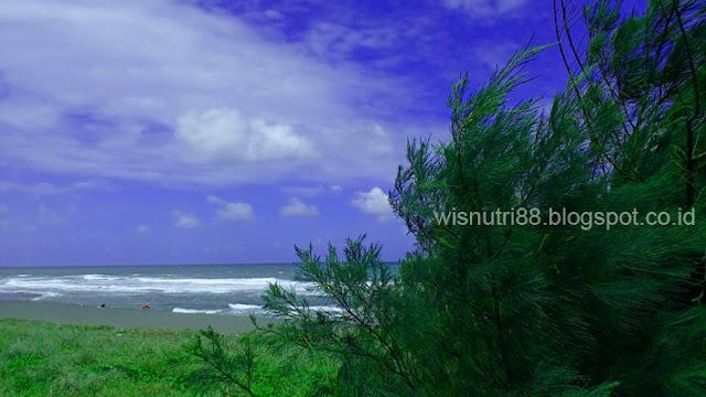 Pantai Jatikontal Purworejo