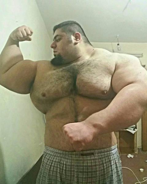"""Meet Real Life Iranian """"Hulk"""" (16 pics)"""