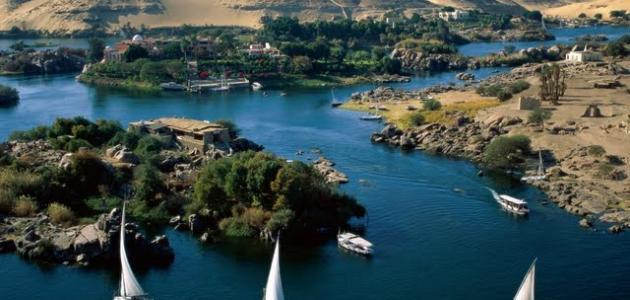 أفضل موضوع تعبير عن نهر النيل بالعناصر يصلح لجميع الصفوف 2021
