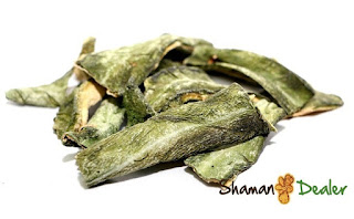https://www.shamandealer.com/en/incienses-and-aromatherapy/49-peruvian-torch-dried.html
