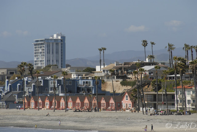Oceanside Beach Rentals