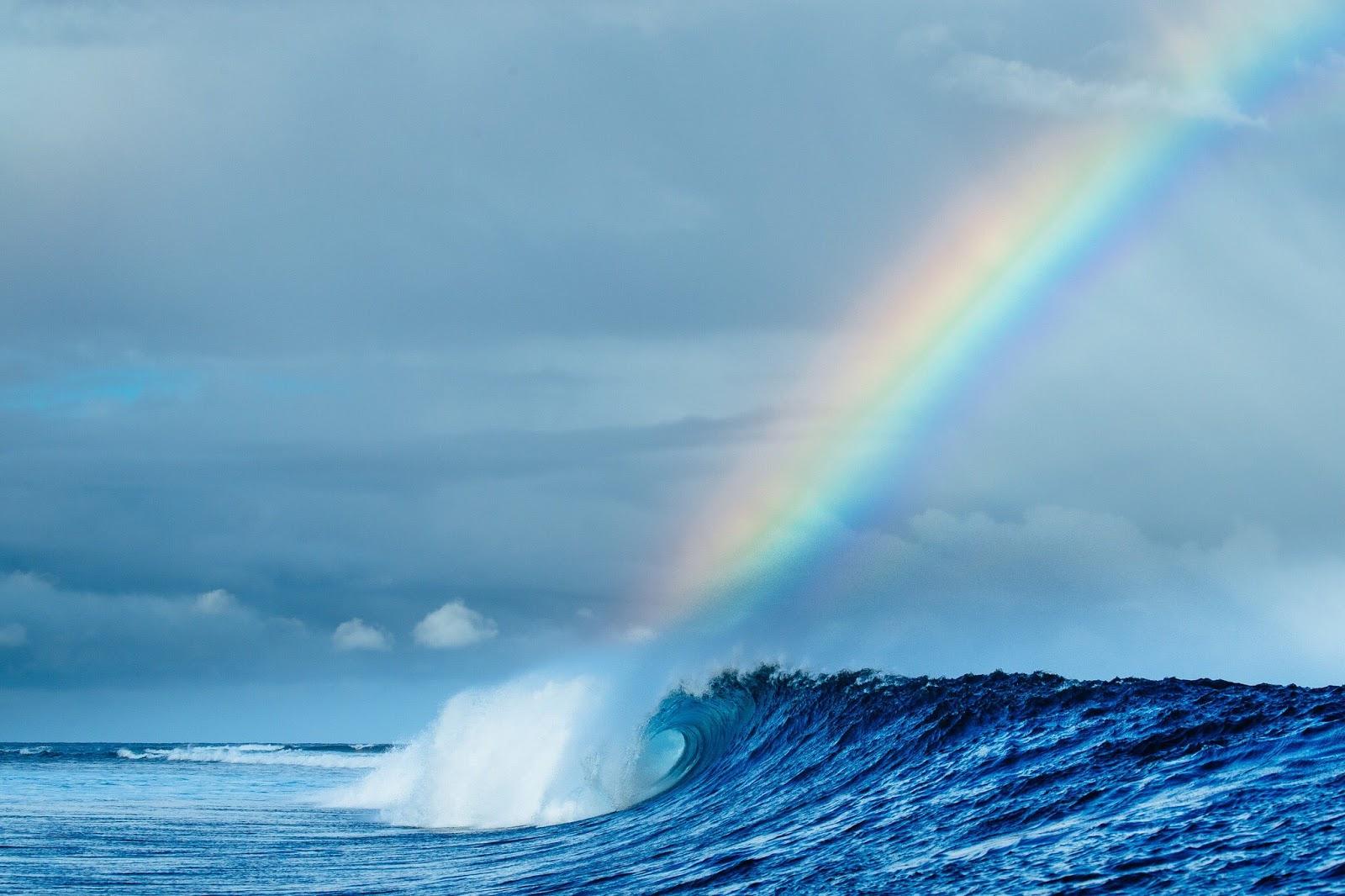 tavarua surf