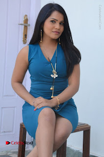 Telugu Actress Kulakarni Mamatha Stills in Blue Short Dress at Idea movie Creations Launch  0131.JPG