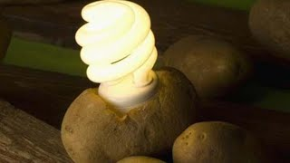 How to get electricity from potato?