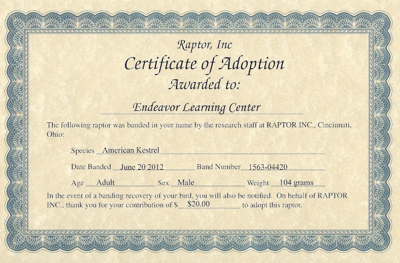 Child Adoption Certificate Template | Sample Resume Communication