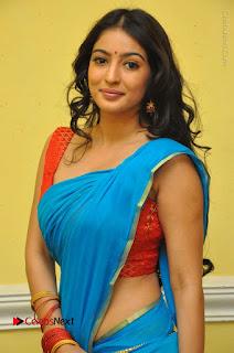 Telugu Actress Vaibhavi Stills in Blue Saree at Www.Meena Bazaar Movie Opening  0013.JPG