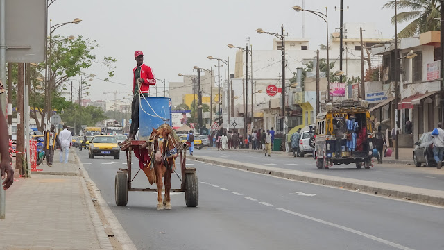 Some horse is used as donkey in Dakar