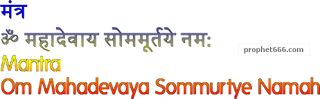 Mantra Chant while offering flowers to the Shivling