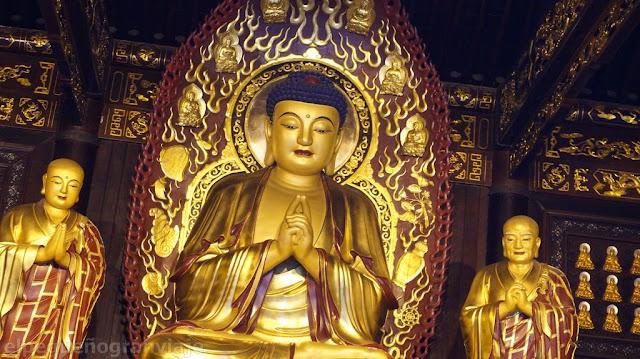 Buda, pagoda, complejo, xian, ganso salvaje