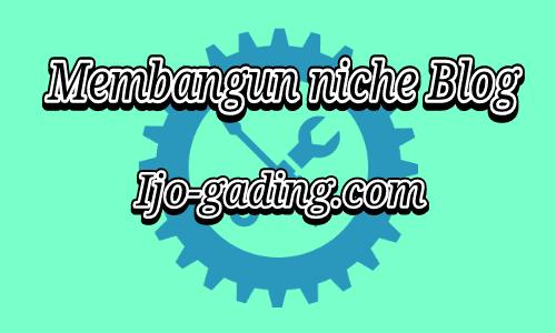 Cara Membangun Niche Blog
