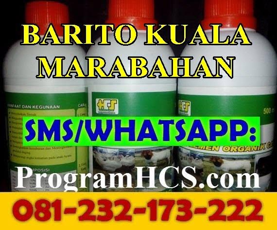 Jual SOC HCS Barito Kuala Marabahan