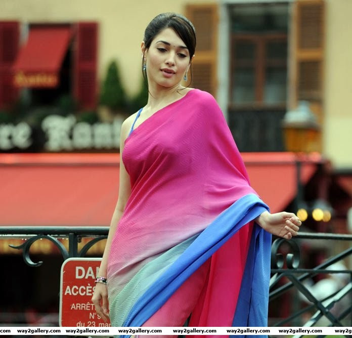 Tamanna in saree new  hot and spicy gallery