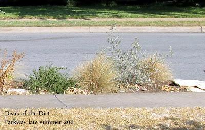 Divasofthedirt,parkway after summer