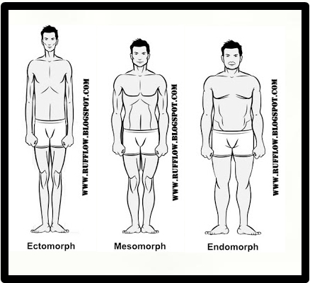 body types men - Monza berglauf-verband com