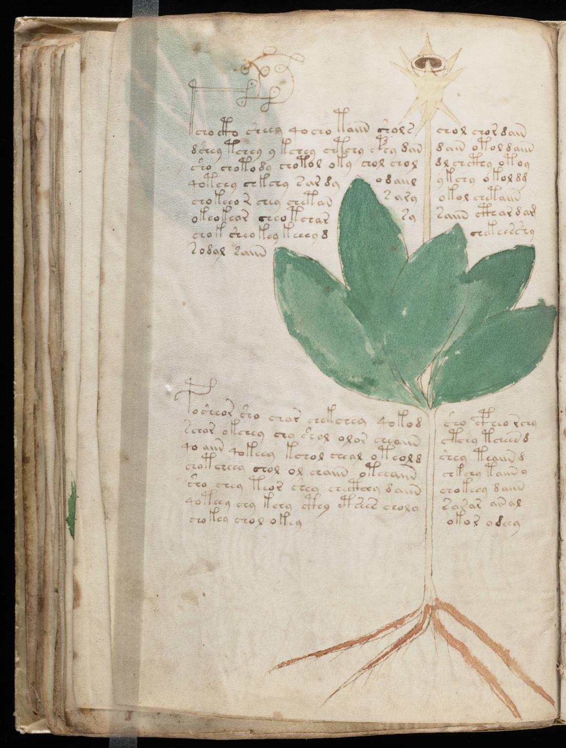 manuscrito082