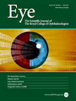 Image of Eye Journal