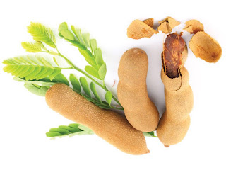 Tamarind Fruit Pictures