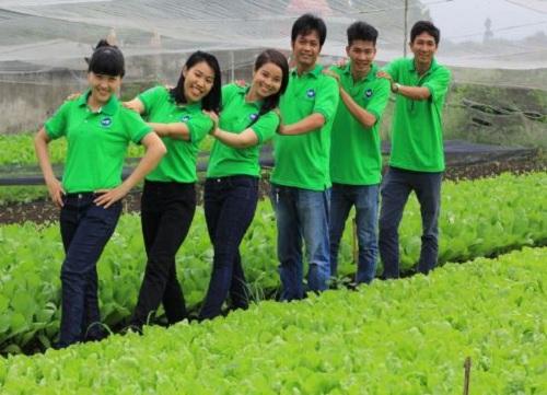 Trang trại rau hữu cơ HB