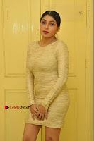 Actress Pooja Roshan Stills in Golden Short Dress at Box Movie Audio Launch  0013.JPG
