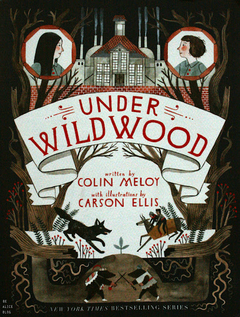 book, wildwood, fantasy, mystery, meloy, ellis, review