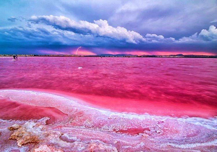 Pembe göl, Avustralya'nın gidilip görülmesi gereken doğa harikaları arasındadır.