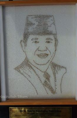 Mozaik Susilo Bambang Yudhoyono terbuat dari Nyamuk
