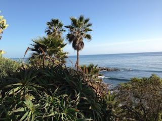 succulents, Palm trees, quiet Pacific Ocean scape, ripples of small waves