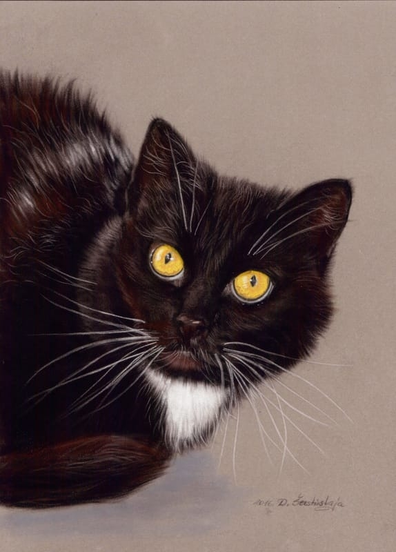 05-Black-Cat-Danguole-Serstinskaja-Paintings-of-Cats-that-look-like-Photographs