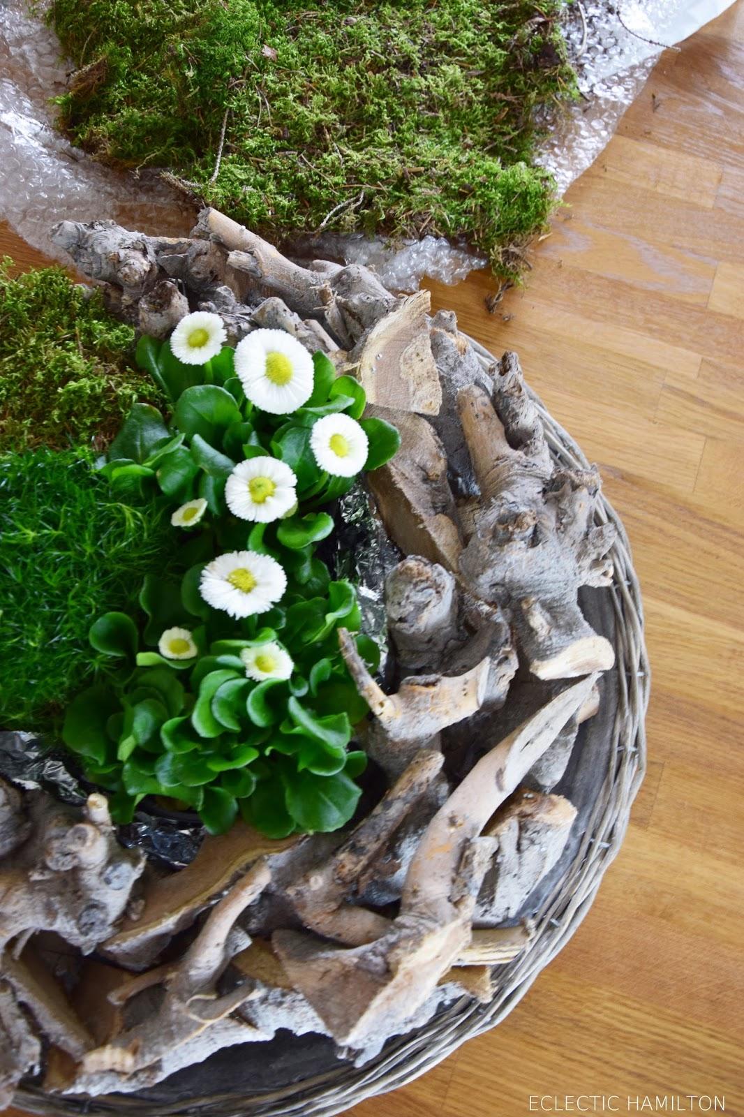 DIY Kranz für den Frühling mit Moos und Bellies. Einfach und schnell selbst gemacht mit Naturmaterialien.  Deko mit Natur. Natürlich, Holzdeko, Tischdeko